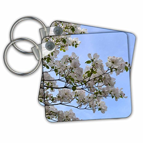 kc-30899-patricia-sanders-flowers-pretty-white-flowering-tree-zen-inspirations-key-chains