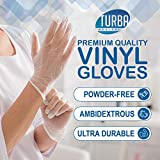 Disposable Vinyl Gloves, 100 Size Large Non