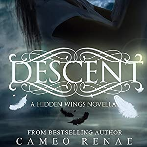 Descent Audiobook