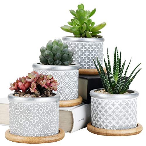 Sun-E Cement Succulent Planter Pots,Cactus Plant Pot Indoor Small Concrete Herb Window Box Container for Home and Office Decor Birthday Wedding Gift Idea with Bamboo Tray Grey (Set of 4) 2.75 Inch
