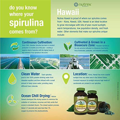 Pure Hawaiian Spirulina Powder 16 oz  Natural Premium Spirulina from Hawaii  Vegan NonGMO