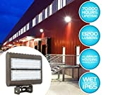Westgate Outdoor LED Flood Light Fixture with