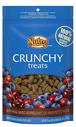 Cherry Crunchy Treats - Nutro Crunchy Dog Treats with Real Mixed Berries 10oz - 2 pack