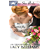 The Butterfly Bride: inspirational western romance (Lone Star Brides Book 3)