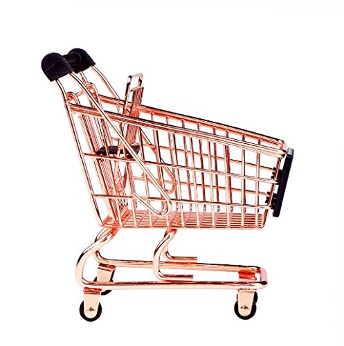 Most Popular Shopping Carts