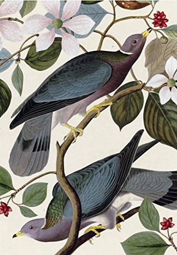(J.J. Audubon