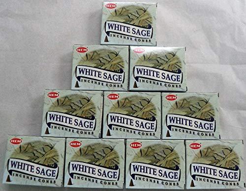 HEM Incense Cones: White Sage - 10 Packs of 10 Cones = 100 Cones (Incense Sage Cones)