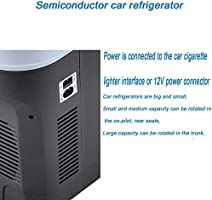 Amazon.es: LFDD - Mini frigorífico portátil para Coche, compresor ...