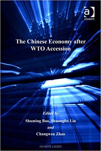 The Chinese Economy after WTO Accession (The Chinese Trade and Industry Series)