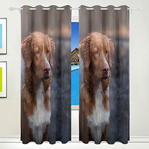Top Carpenter Dog Nova Scotia Duck Thermal Insulated Blackout Grommet Printed Window Curtain - 84x55 in - 100% Polyester 2 Panels for Living Room Home Decoration
