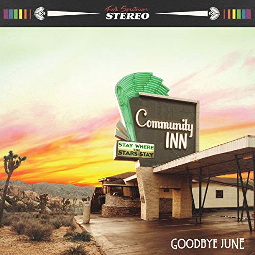 Community Inn (Vinyl album & guitar -