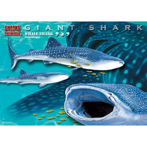 whale-shark-real-jigsaw-puzzle-b5-size-330-piece-japan-import