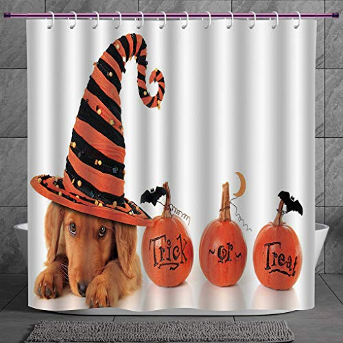Stylish Shower Curtain 2.0 [ Halloween,Cute Puppy Wearing a Witch Hat Trick or Treat Little Bats Festive Funny,Orange Black Brown ] Digital Printing Polyester Antique Theme with Adjustable Hook