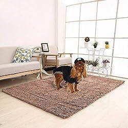 Meilocar Ultra Absorbent Soft Floor Mat,Pet Bed Mat/Rug for Dogs & Cats,Bathroom Non-Slip Doormat, Mats Machine-Washable,23''x34'',Camel