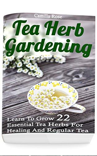 tea-herb-gardening-learn-to-grow-22-essential-tea-herbs-for-healing-and-regular-tea