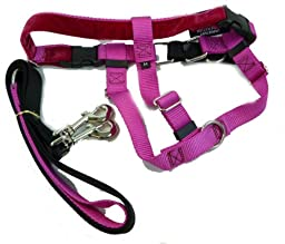 Freedom No Pull Harness and Leash Training Kit Raspberry Medium