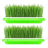 sprouter tray - 2Pcs Sprouter Tray Soil-Free Densely Small Hole Healthy Wheatgrass Grower 9.84x13.4x1.77inch