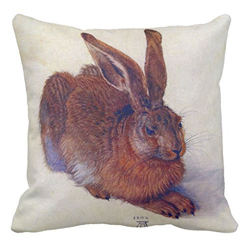 Renaissance Fine Art - Young Hare By Albrecht Durer, Renaissance Fine Art Decorative Throw Pillow Cover for Living Room Canvas 16 x 16 Square Throw Pillow with Zipper