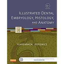 Illustrated Dental Embryology, Histology, and Anatomy Binder Ready