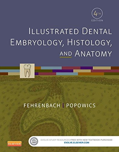 Download Illustrated Dental Embryology, Histology, and Anatomy Pdf