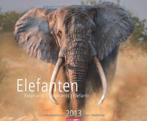 Elefanten 2013