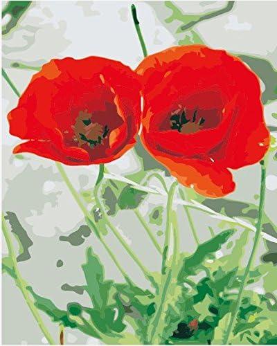 Vacio Pintura por Número de Kits DIY Pintura al óleo para Adultos Niños Flor de Amapola roja Pared Cuadro de Pintura para el Arte de la Sala de Estar Decoración 40x50cm (Sin Marco)