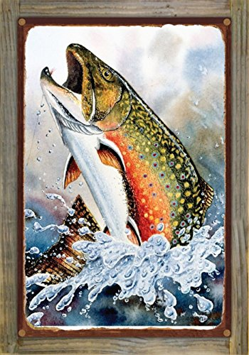 Brook Trout Rustic Metal Print on Reclaimed Barn Wood by Dave Bartholet (12