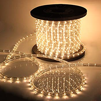 Amazon 150ft warm white led rope light 12 in dia 2 wire vidagoods 150 led rope light 110v party home outdoor xmas lighting ip67 waterproof warm aloadofball Images