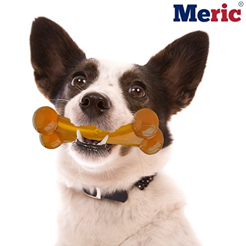 Nylon Dog Bone (1 pc) - Bacon Flavored Chew Toy for Pugs, Beagles, Doberman, Retrievers and More - Durable, Long Lasting and Bite Resistant - Alleviates Boredom and Improves Dental Health