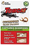 Tomcat Scorpion Glue Boards, 4-Pack (Not Sold in AK)