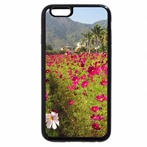 iPhone 6S / iPhone 6 Case (Black) Cosmos flower field