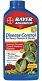Bayer Advanced 701250 Disease Control for Rose, Flower and Shrubs Concentrate, 32-Ounce