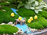 Tophappy Miniature Fairy Garden Ornaments Kit Set for DIY Fairy Garden Dollhouse Décor (Herd of Chickens and Bridge) For Sale