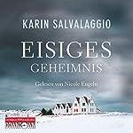 Eisiges Geheimnis | Karin Salvalaggio
