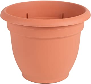 """product image for Bloem Ariana Planter with Self Watering Grid - 12"""" - Terra Cotta"""