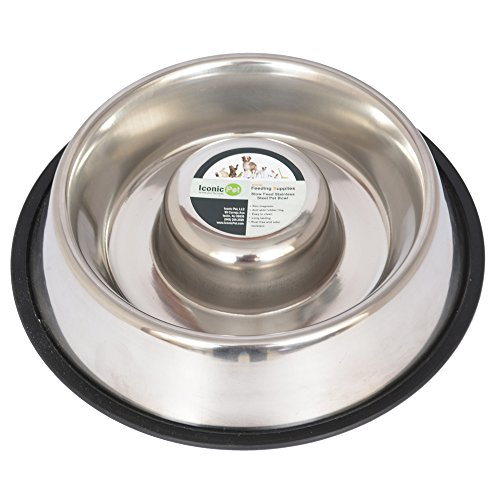 Iconic Pet Slow Feed Stainless Steel Pet Bowl for Dogs, Small/12-Ounce