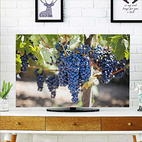 aolankaili TV dust Cover Purple Grapes Under The Grapevine TV dust Cover W30 x H50 INCH/TV 52
