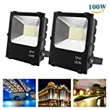 Richday New 2Pack 100W LED Flood Lights Spotlights Outdoor Waterproof Work Light Daylight White 6500k 85V-265V