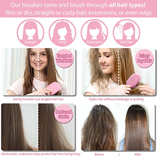 NuWay 4Hair 2-4-1 PRICE! Traveler with FREE Vanity! Best Patented Professional Detangling Travel and Paddle Brushes - For Wet Dry Thin Fine Thick Curly or Straight Hair - For Adults & Kids (Pink) by NuWay 4Hair (Image #7)