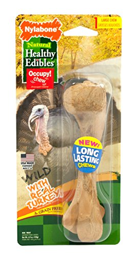 Nylabone 1 Count Healthy Edibles Large Wild Turkey Dog Treat (Nylabone Edibles Turkey)