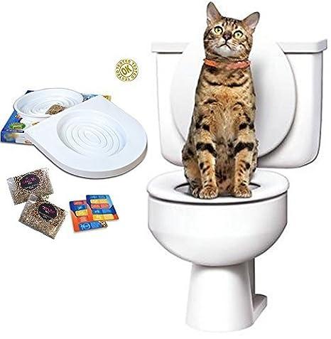 Ducomi Bobo - Kit para el Entrenamiento de Gatos - Entrene a su Mascota a Usar el Inodoro - Útil Alternativa del Arenero ...