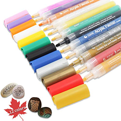 Acrylic Paint Marker Pens, Set of 12 Colors Markers Water Based Paint Pen for Rock Painting, Canvas, Photo Album, DIY Craft, School Project, Glass, Ceramic, Wood, Metal (Medium)