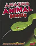 Amazing Animal Senses, John Townsend, 1410947475