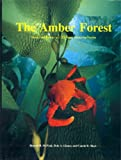 img - for Amber Forest: Beauty and Biology of California's Submarine Forests book / textbook / text book