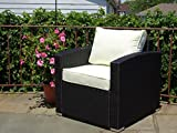 Outdoor Patio Lounge Living Chair w/cushion Garden Furniture Backyard Resin Wicker Chair . Black Color