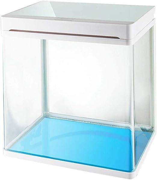 Amazon Com Aquarium Home Decoration Creative Small Desktop Fish Tank Hd Glass Cylinder Led Light And Filter Aquarium 2 Color Optional Color White Home Kitchen