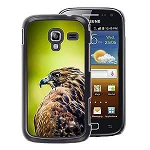A-type Arte & diseño plástico duro Fundas Cover Cubre Hard Case Cover para Samsung Galaxy Ace 2 (Hawk Bird Green Focus Blurry Summer)