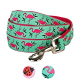 Blueberry Pet Durable Pink Flamingo on Light Emerald Dog Leash 4 ft x 1'', Large, Basic Nylon Leashes for Dogs