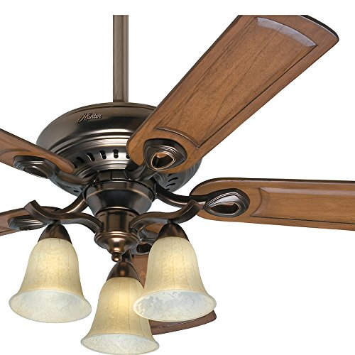 Hunter Fan 52 inch Traditional Ceiling Fan in Bronze Patina with Light Kit and 5 Caramel Carved Wood Blades (Renewed) ()