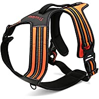 Pettom No-pull Dog Harness-3M Reflective Outdoor Adventure Pet Vest with Padded Handle